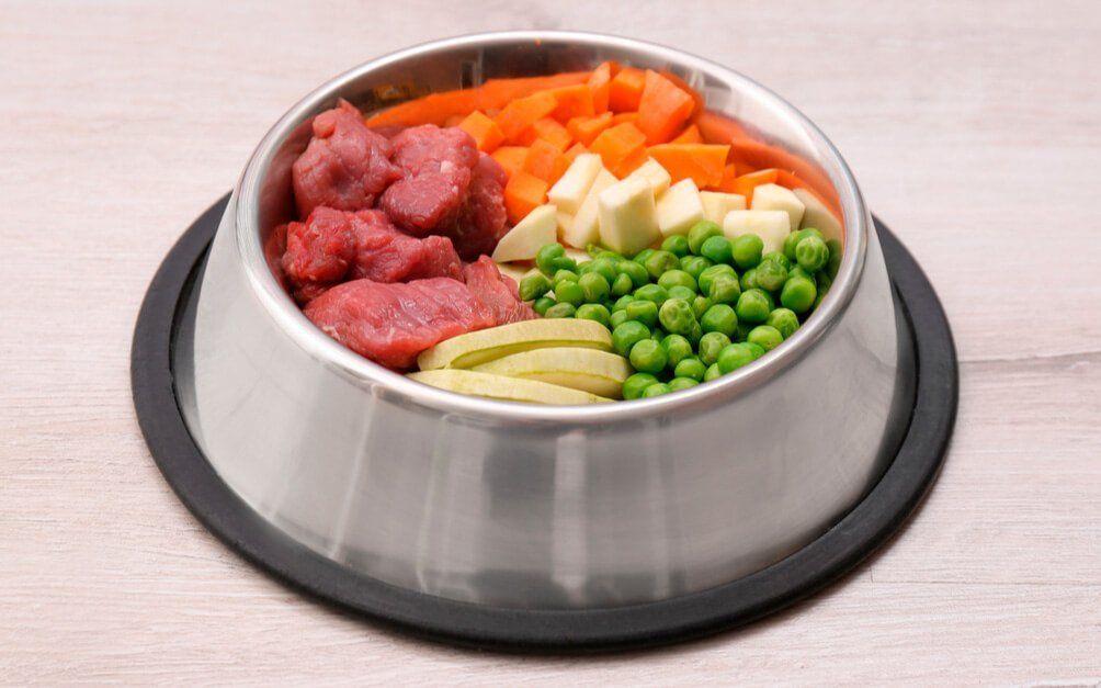 Comida casera para perros chihuahua